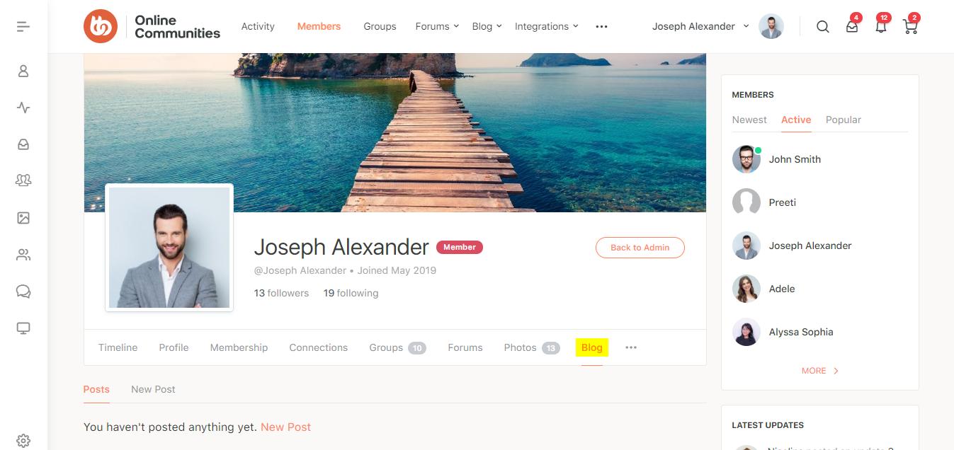 BuddyBlog - Blog section on a user's profile page