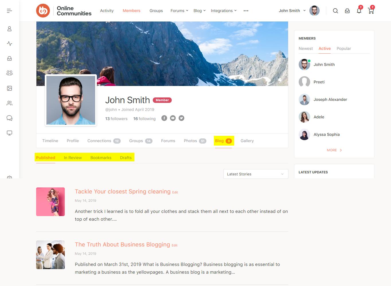 BuddyBoss User Blog - Blog section on a user's profile