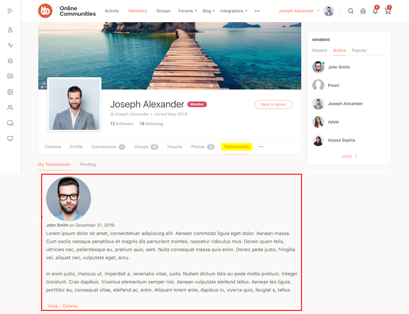 BuddyPress User Testimonials - Testimonials on a user's profile