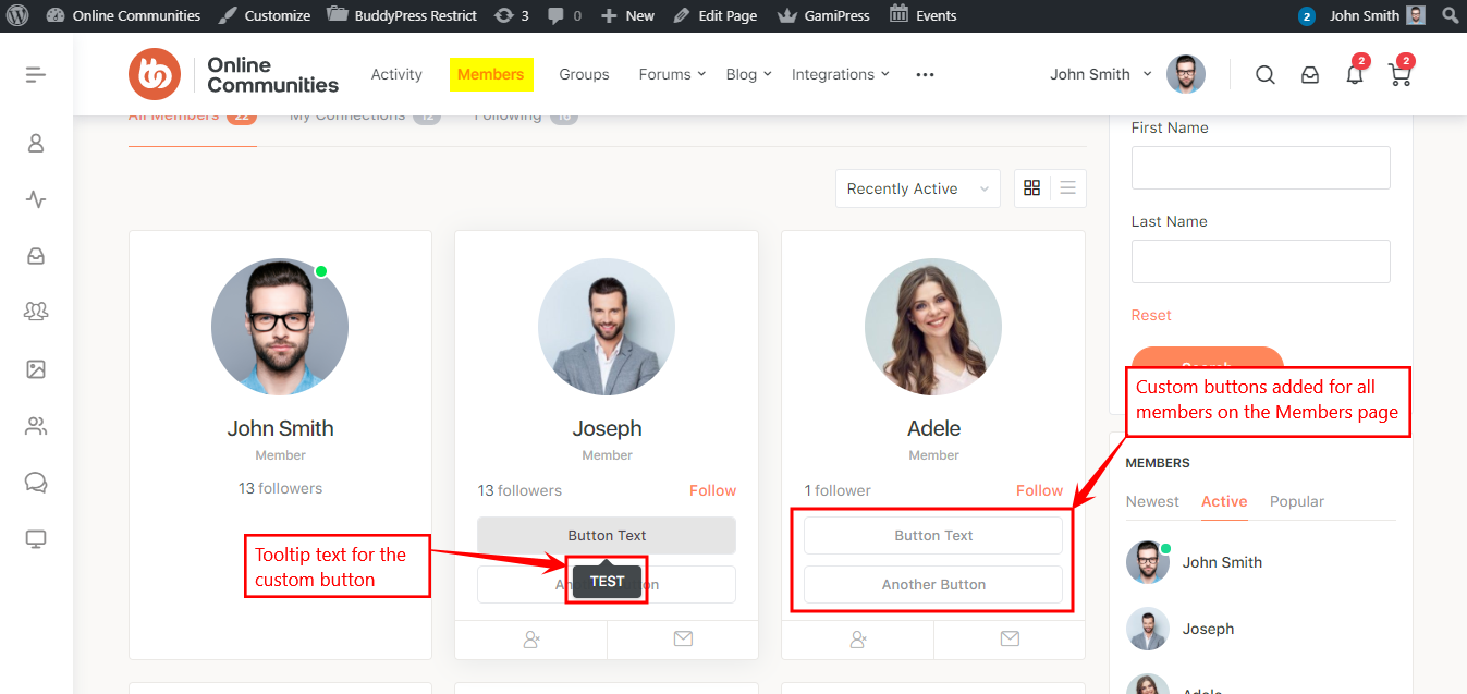 Theme Editor - Previewing the custom buttons on the Members page
