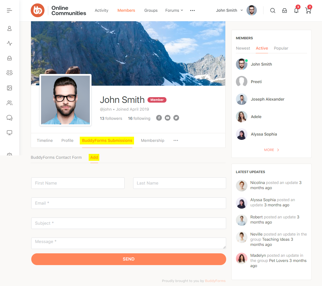 BuddyForms Members - Form preview on a user's profile