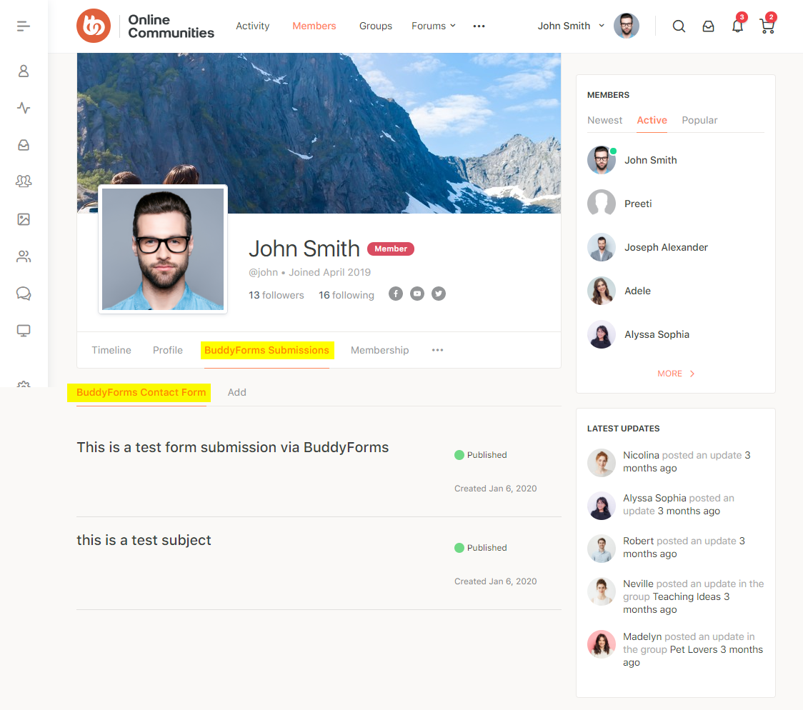 BuddyForms Members - Form submissions preview on a user's profile