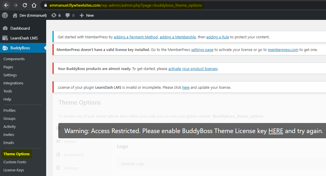 BuddyBoss Theme options on a live production site without an activated license
