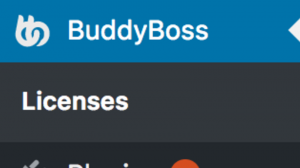 BuddyBoss Licences Navigation
