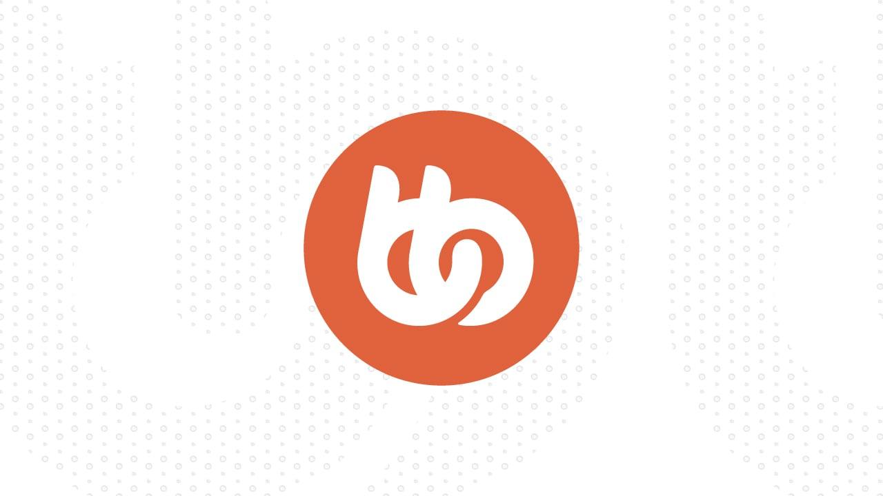 www.buddyboss.com